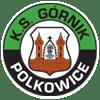 Полковице